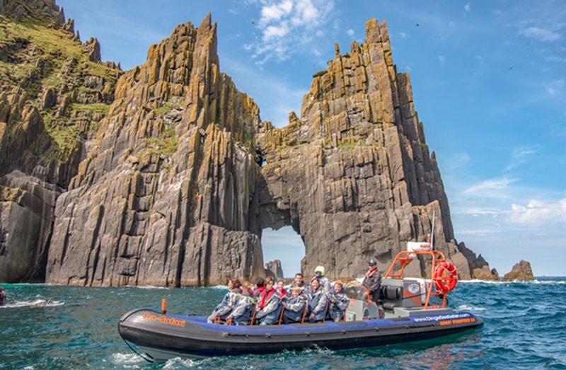 Dingle Sea Safari at the Blasket Islands