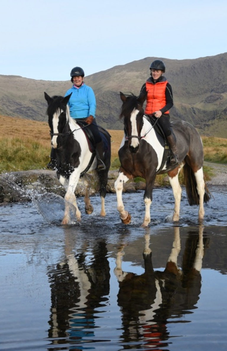 katy-sea-view-equestrian